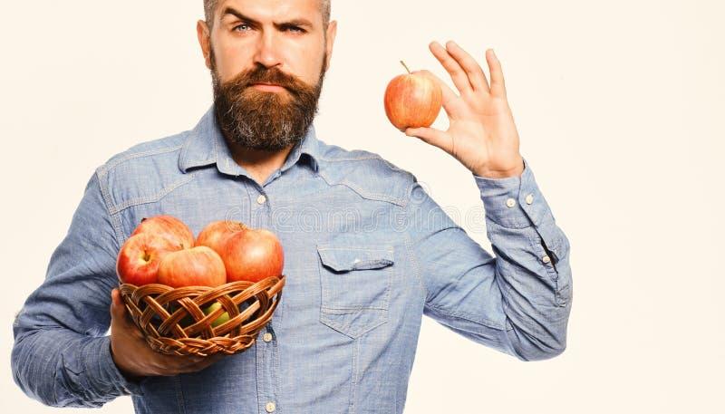 O homem com barba guarda a bacia de vime com frutos da maçã foto de stock