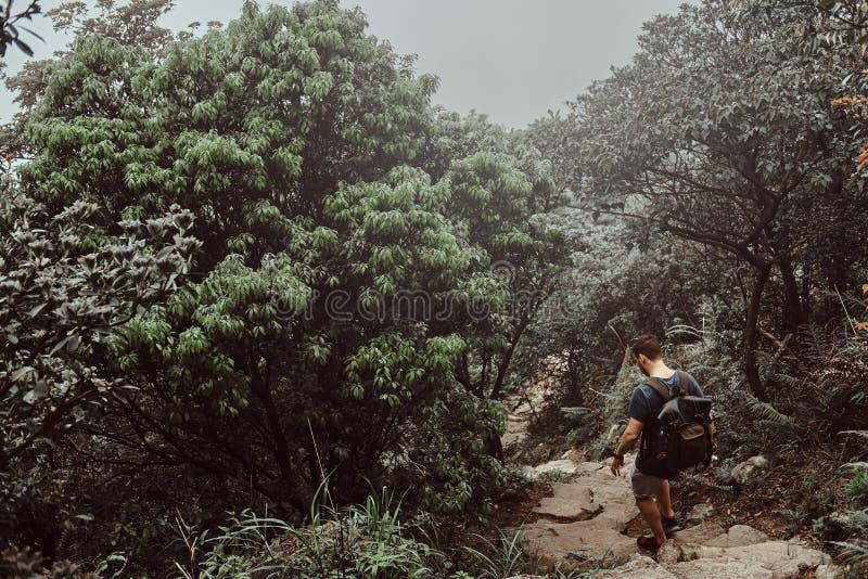 O homem com trouxa está andando pelo trajeto de pedra no meio da floresta verde luxúria da montanha fotos de stock