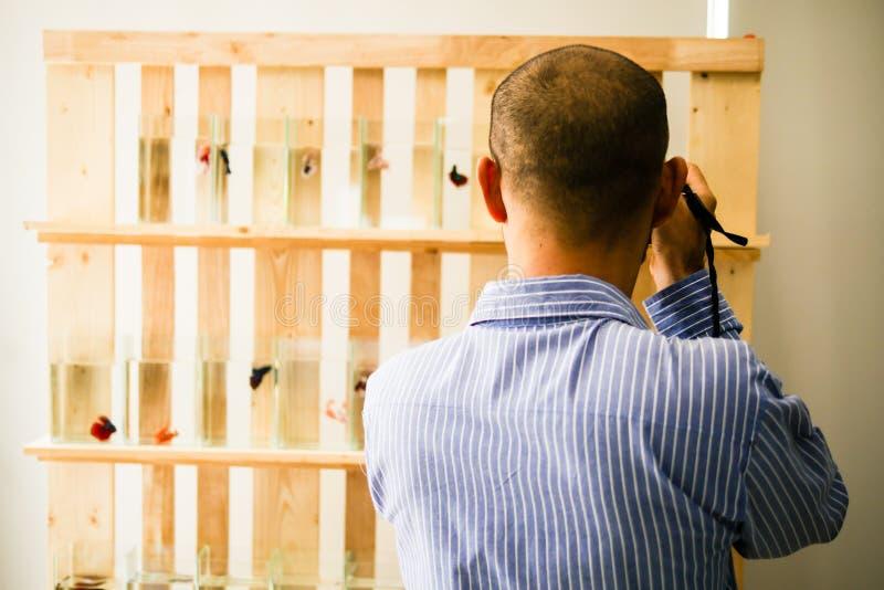 O homem considerável asiático está tomando uma foto em uma loja dos peixes imagem de stock royalty free