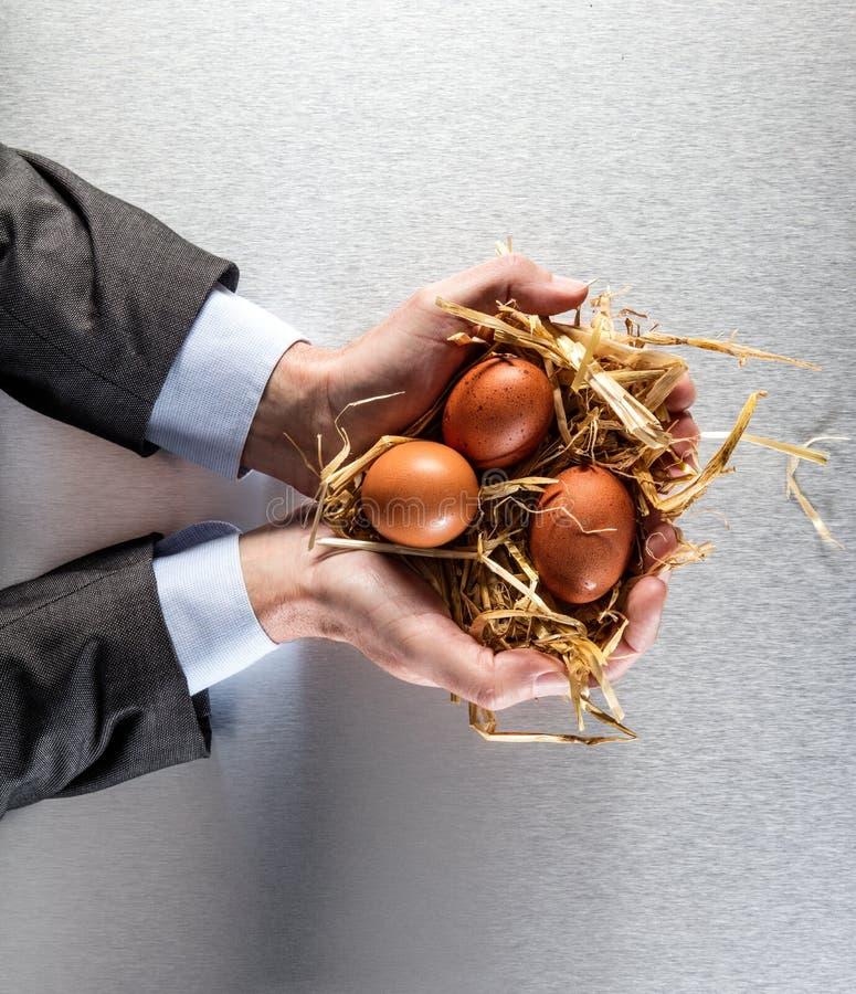 O homem de negócios entrega ovos orgânicos de oferecimento para o negócio da agricultura e da nutrição imagens de stock royalty free