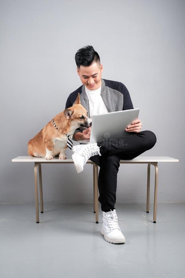 O homem de negócios novo considerável está usando o portátil ao sentar-se com seu cão na cadeira imagens de stock