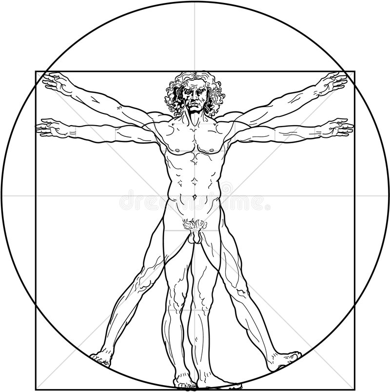 O homem de Vitruvian ilustração do vetor