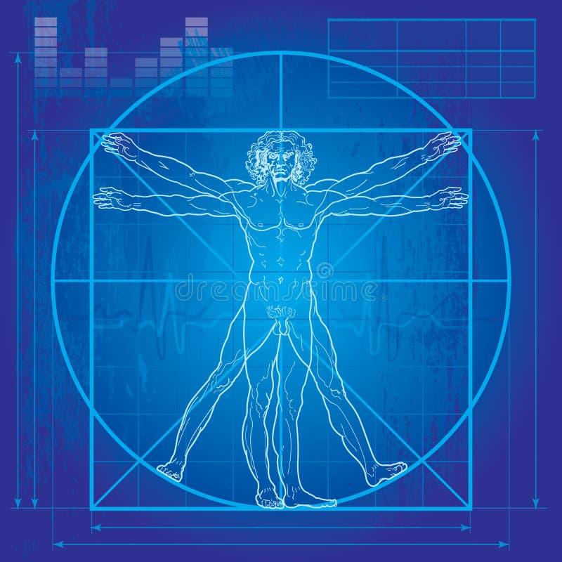 O homem de Vitruvian (versão do modelo) ilustração stock