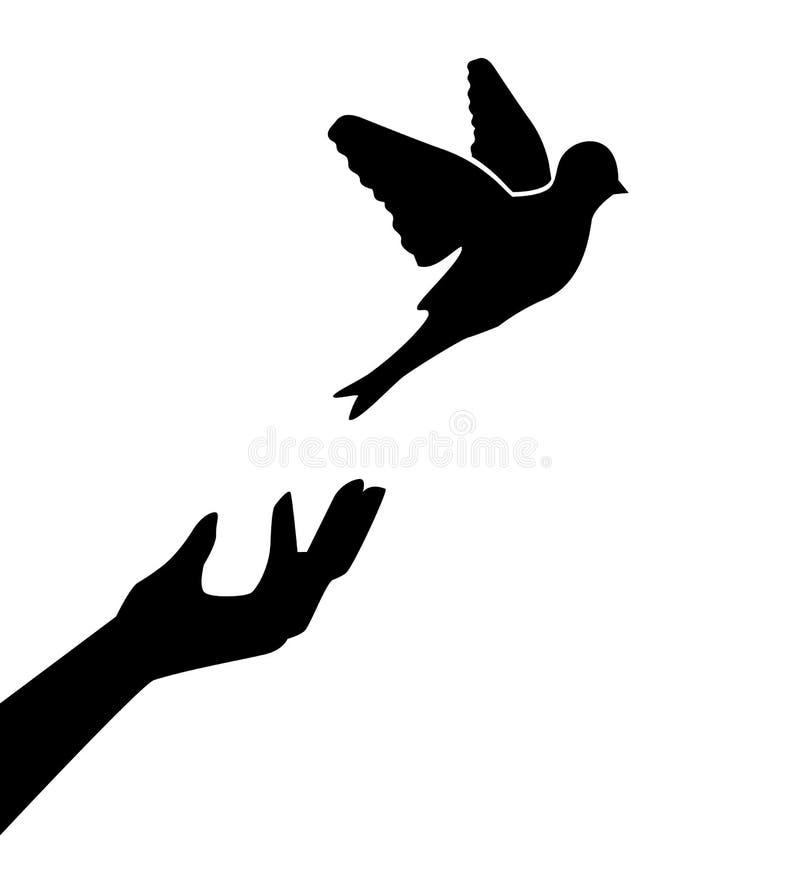 O homem deixou o pássaro ilustração do vetor