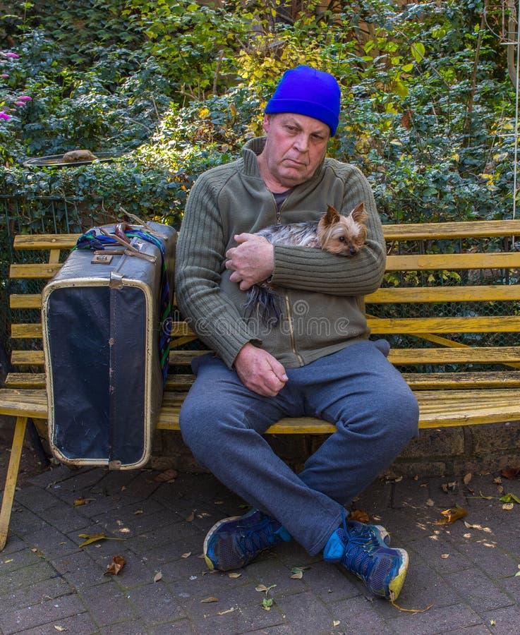 O homem desabrigado e seu cão sentam-se em um banco de parque fotografia de stock royalty free