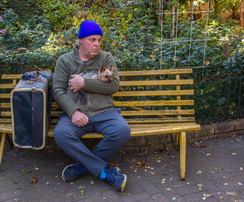 O homem desabrigado e seu cão sentam-se em um banco de parque foto de stock