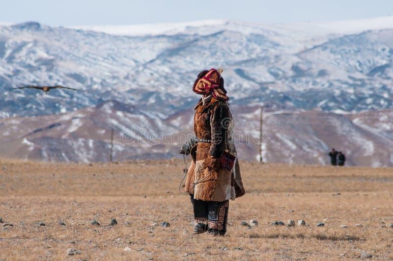 O homem do Mongolian do Cazaque vestiu-se com equipamento tradicional que treina a águia dourada para travar uma raposa reza imagens de stock royalty free