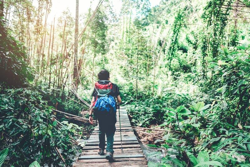 O homem do viajante com a trouxa que caminha a aventura e as férias montam fotos de stock royalty free