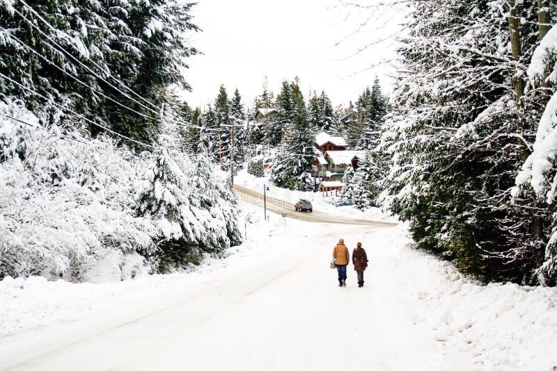 O homem e a mulher andam em uma cena da neve do inverno fotos de stock