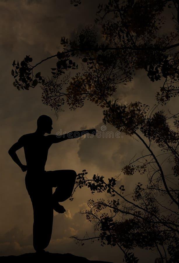 O homem espiritual pratica o fundo das artes marciais foto de stock