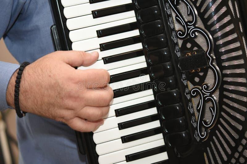 O homem joga o acordeão dedos no acordeão fotografia de stock royalty free