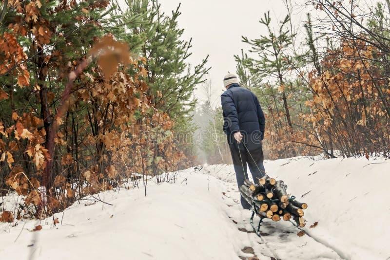 O homem leva a madeira em um trenó na floresta nevado do inverno imagens de stock