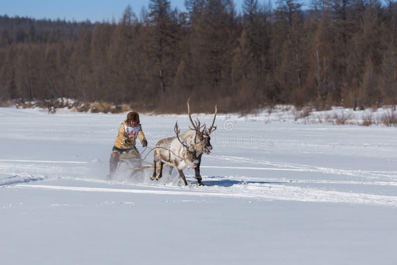 O homem na equitação nacional do traje em um trenó da rena foto de stock