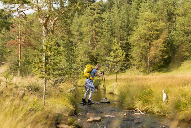 O homem novo cruza um córrego da montanha durante uma caminhada em um dia ensolarado imagens de stock