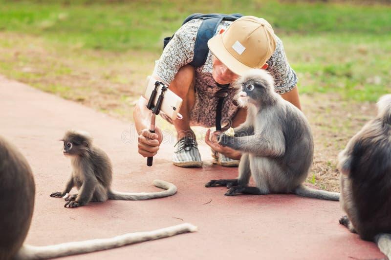 O homem novo toma um selfie com macacos fotos de stock