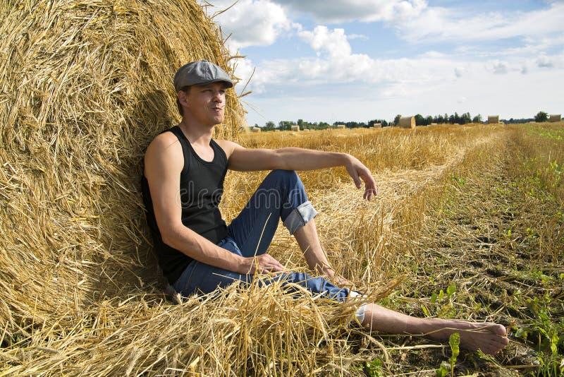 Download O Homem Perto Da Esfera Do Centeio Faz Alguns Pensamentos Imagem de Stock - Imagem de crescimento, refeição: 26501473