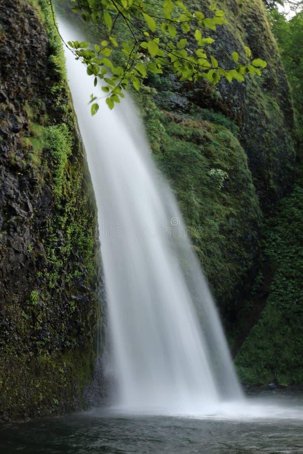O Horsetail cai… uma de muitas cachoeiras bonitas no desfiladeiro de Colômbia imagens de stock