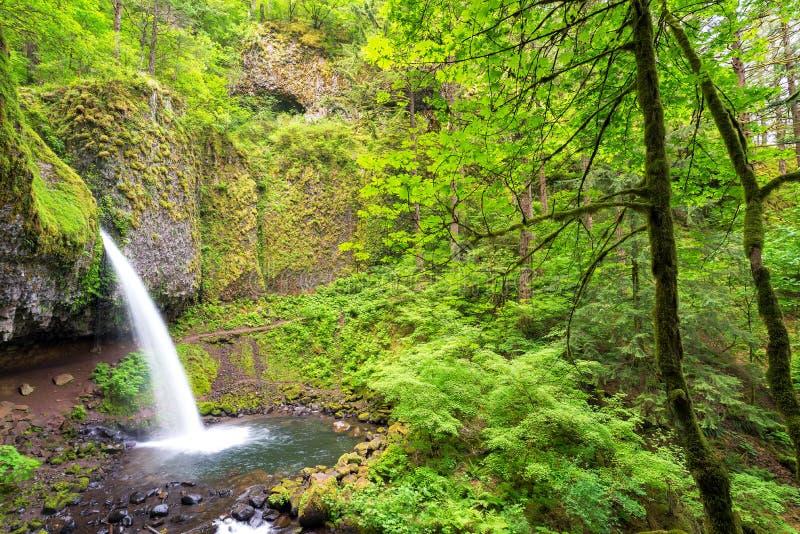 O Horsetail cai… uma de muitas cachoeiras bonitas no desfiladeiro de Colômbia foto de stock