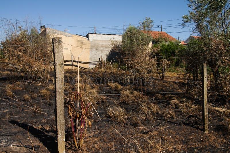 O incêndio florestal queimou a terra até casas pequenas da vila - Pedrogao grandioso imagens de stock