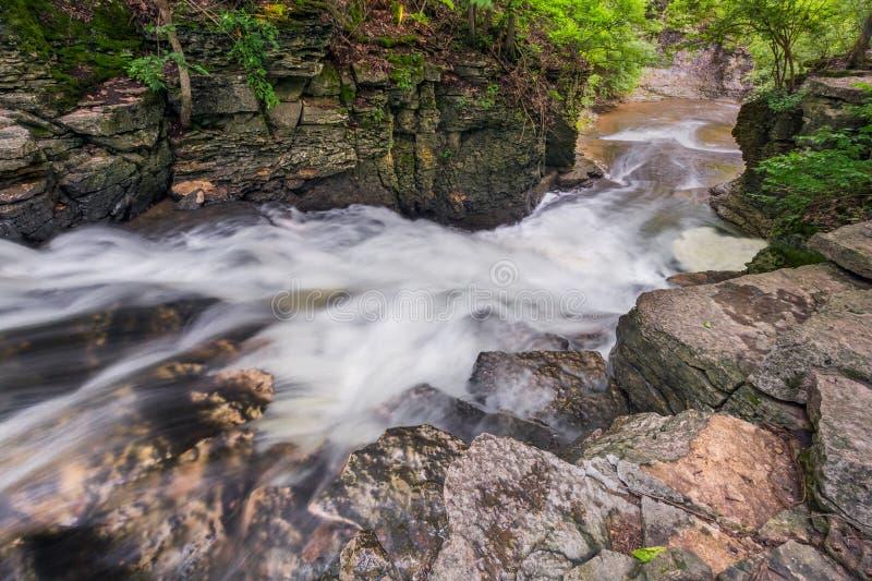 O indiano cai cascata fotografia de stock royalty free