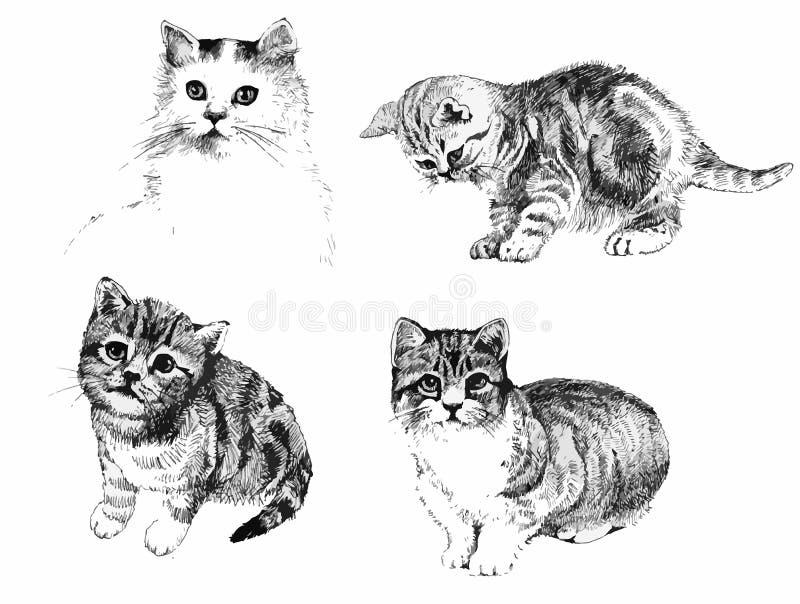 O inkn preto e branco dos gatos e dos gatinhos entrega a ilustração tirada ilustração do vetor