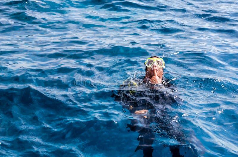 O instrutor de mergulho mante distraído turistas pelas fontes que abrem de foto de stock royalty free