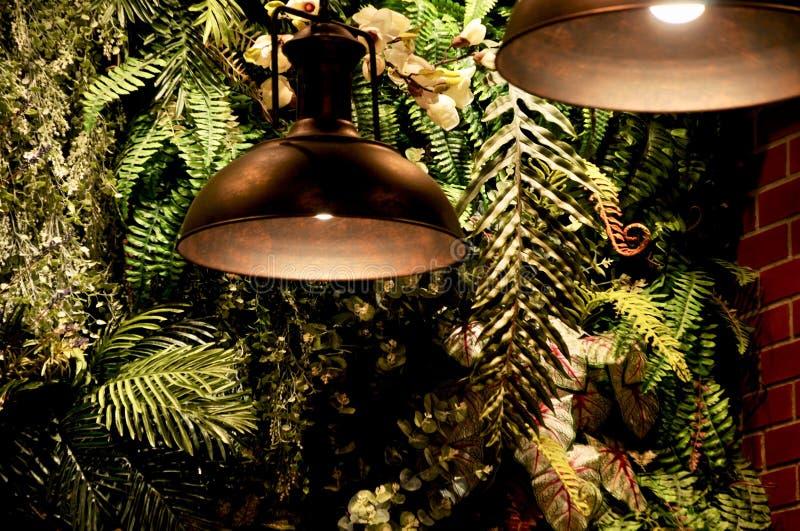 O interior moderno da parede de um jardim home encheu muitas plantas com a lâmpada da decoração do teto foto de stock