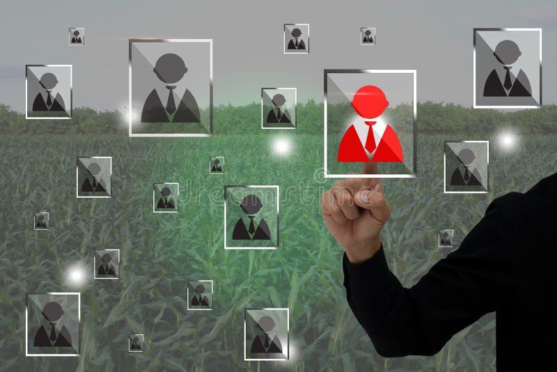 O Internet do conceito da agricultura das coisas, cultivo esperto, uso do fazendeiro aumentou a aplicação da realidade para contr imagens de stock