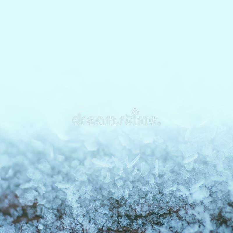 O inverno congelou o fundo foto de stock royalty free