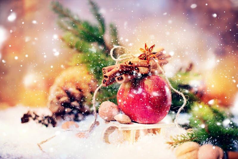 O inverno vermelho Apple ramifica canela de varas Anise Small Sledge fotografia de stock royalty free