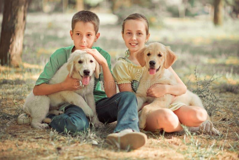 O irmão bonito da irmã do jovem adolescente da cena do filhote de cachorro do perdigueiro aprecia levantar férias das horas de ve fotografia de stock