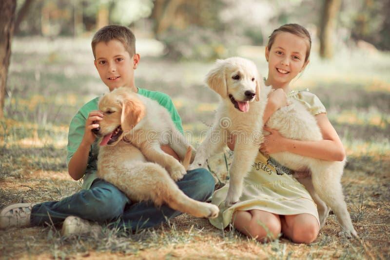 O irmão bonito da irmã do jovem adolescente da cena do filhote de cachorro do perdigueiro aprecia levantar férias das horas de ve fotos de stock royalty free