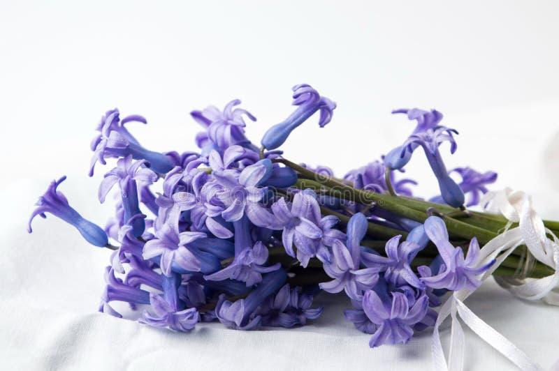 O jacinto roxo floresce o ramalhete na matéria têxtil fotos de stock royalty free