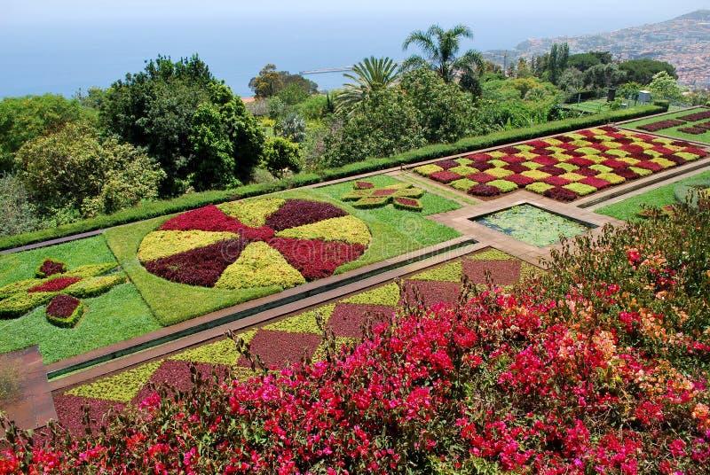 O jardim botânico de Funchal em Madeira foto de stock