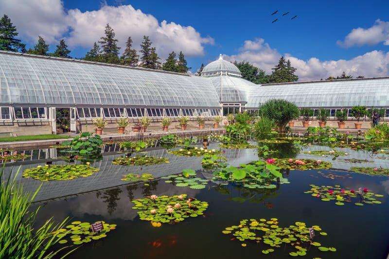 O jardim botânico de New York imagens de stock
