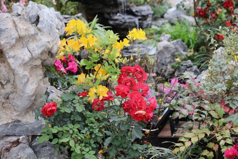 O jardim chinês clássico, China fotos de stock