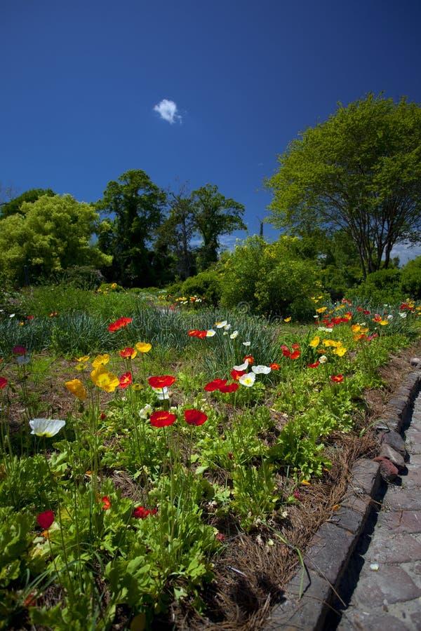 O jardim da casa fotografia de stock