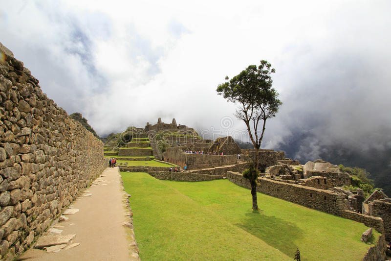 O jardim de Machu Picchu imagens de stock