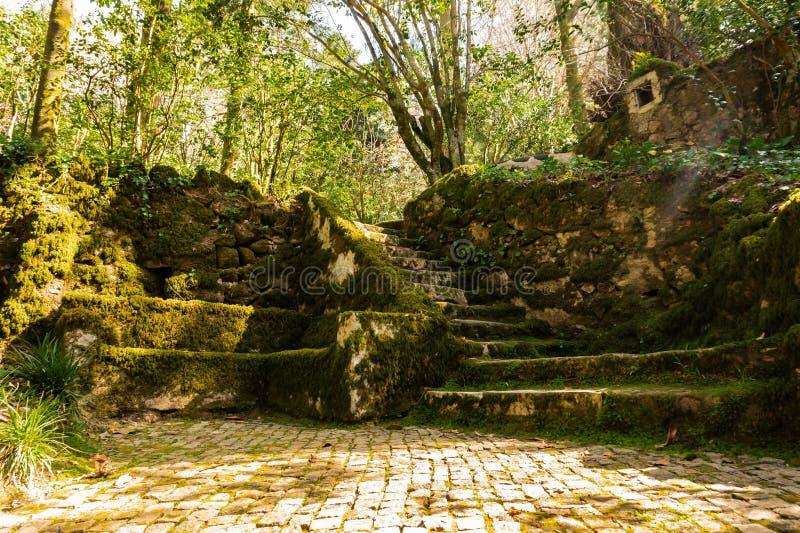 O jardim de Sintra perto do palácio de Pena com banco e as escadas de pedra cobriu o musgo fotos de stock royalty free