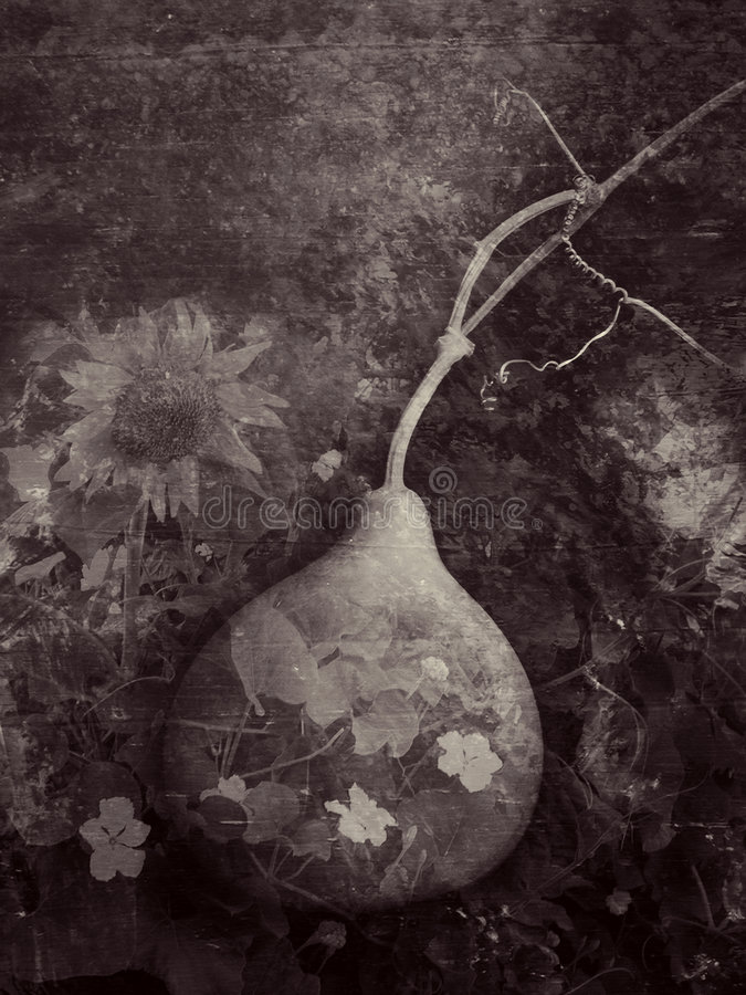 O jardim do Gourd imagem de stock