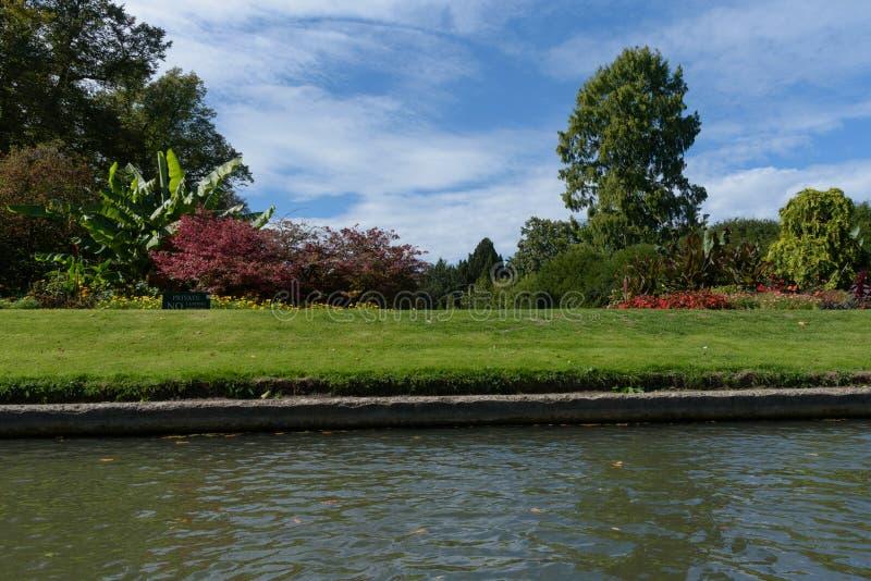 O jardim dos companheiros em Clare College, Cambridge viu do rio foto de stock