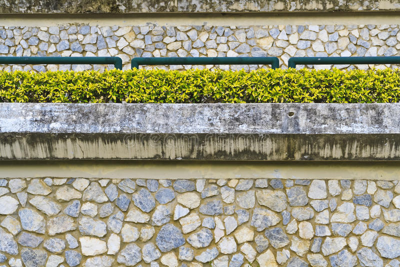 O jardim pequeno na parede da rocha fotografia de stock
