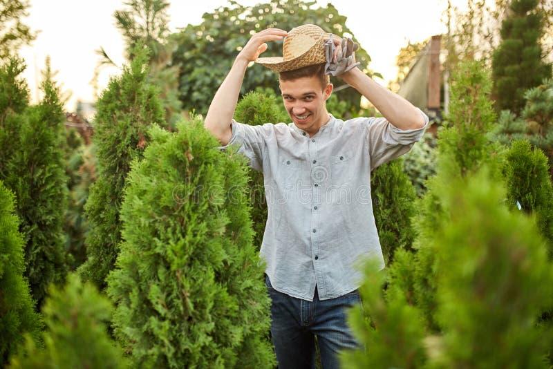 O jardineiro de sorriso do indivíduo em um chapéu de palha está no berçário-jardim com muitos thujas em um dia ensolarado morno foto de stock