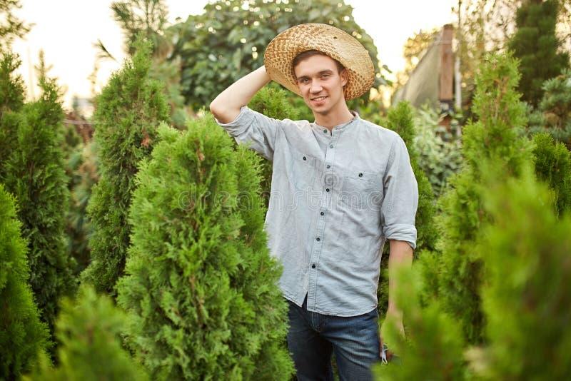 O jardineiro de sorriso do indivíduo em um chapéu de palha está no berçário-jardim com muitos thujas em um dia ensolarado morno imagens de stock royalty free