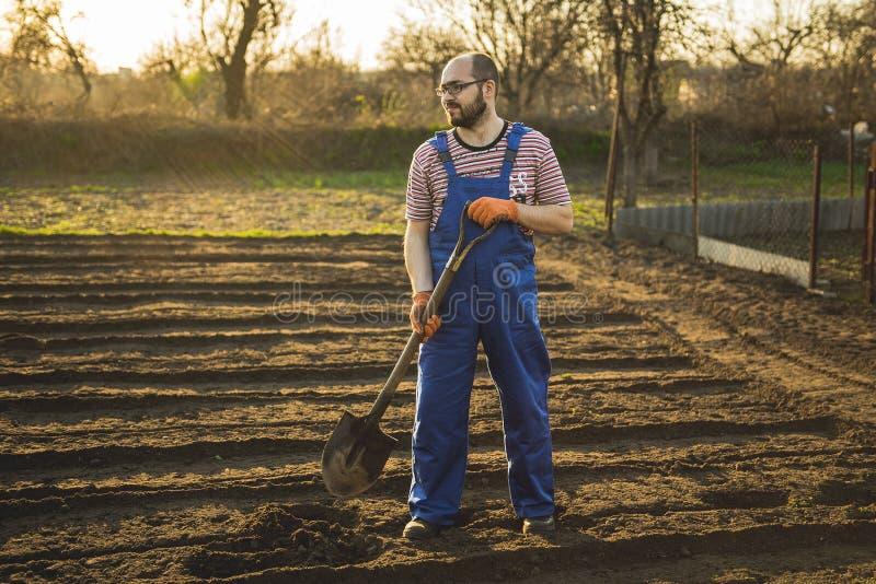 O jardineiro escava o jardim com uma pá fotos de stock royalty free