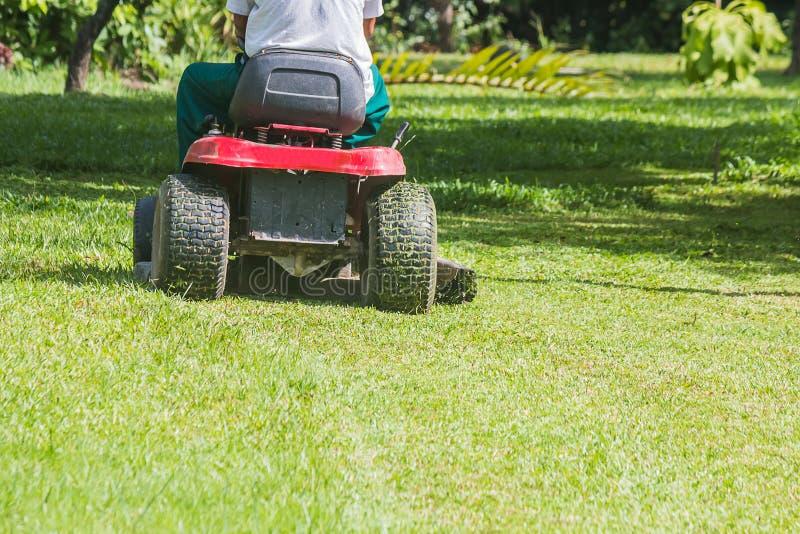 O jardineiro está usando um cortador de grama imagens de stock royalty free
