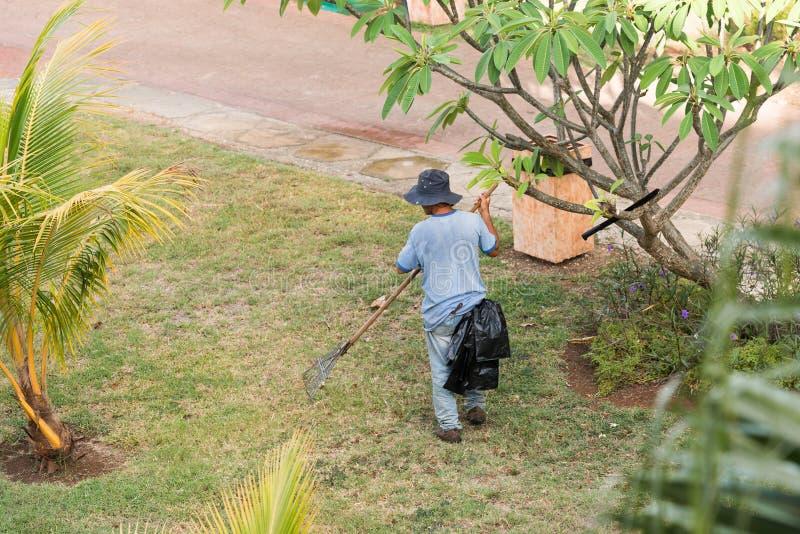 O jardineiro trabalha no jardim, Varadero, Matanzas, Cuba Copie o espaço para o texto imagem de stock