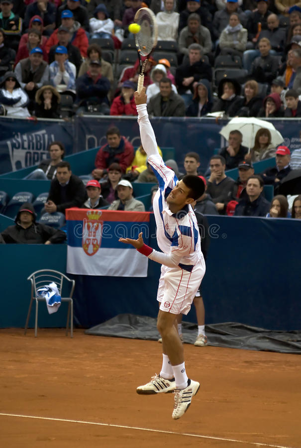 O jogador N.Djokovic seriu uma esfera fotos de stock