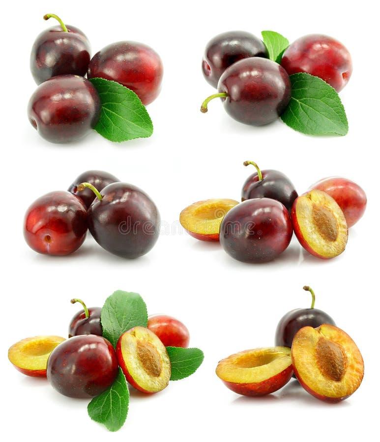 O jogo da ameixa fresca frutifica com folhas verdes fotografia de stock royalty free
