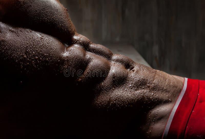 O jovem muscular ostenta o indivíduo 'sexy' no roupa interior imagem de stock